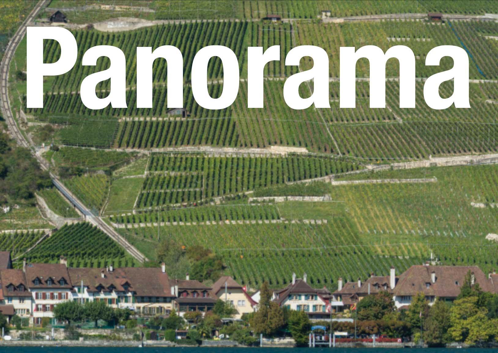 Panorama Ligerz